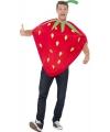 Aardbeien Carnavalskleding