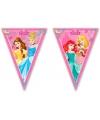 Prinsessen thema vlaggenlijn
