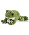 Speelgoed groene knuffel kikker 18 cm