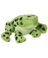 Pijlgifkikker met gestikte ogen knuffel 10 cm