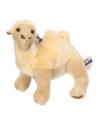 Pluche knuffel kameel 25 cm