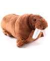 Pluche knuffel walrus 21 cm