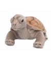 Schildpadden knuffels 20 cm