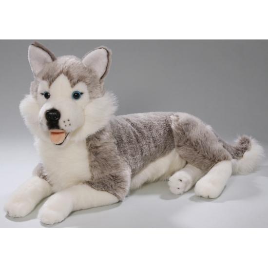 Grijze Husky knuffel 42 cm