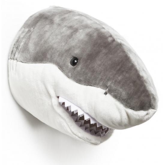 Haaien kop van stof