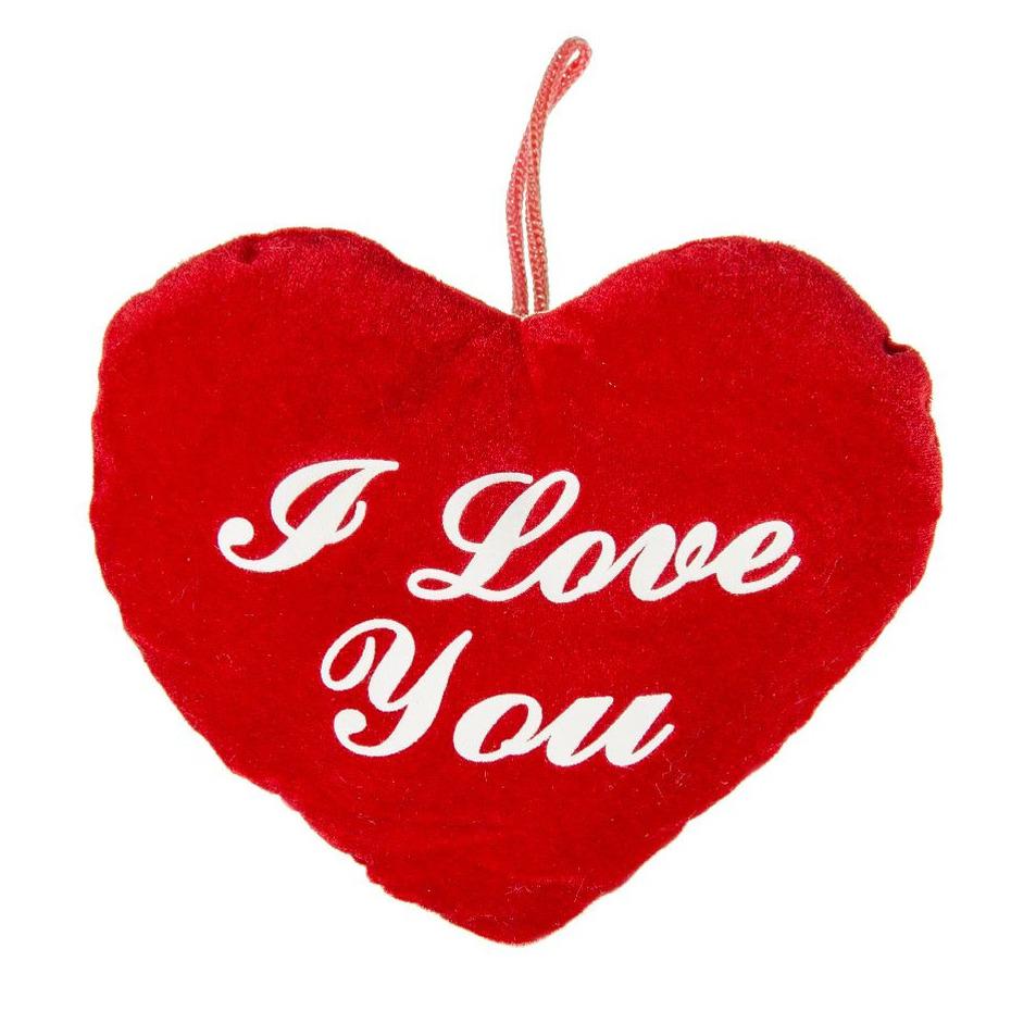 Pluche rood hart kussen I Love You 22 cm