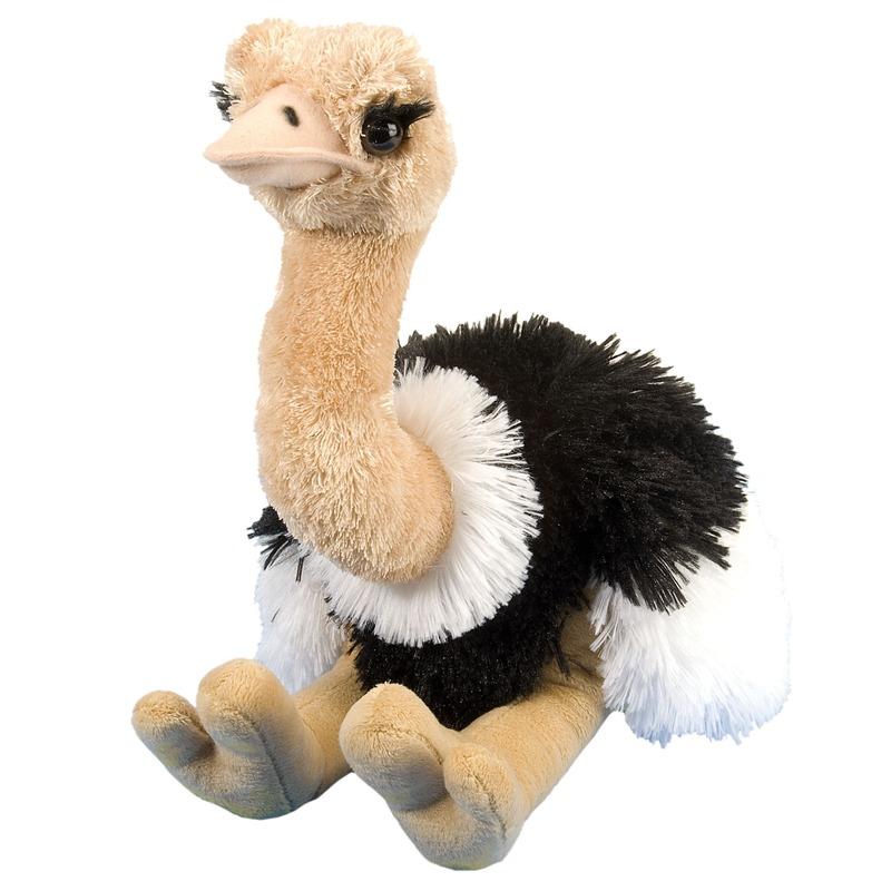 Struisvogels speelgoed artikelen struisvogel knuffelbeest gekleurd 35 cm