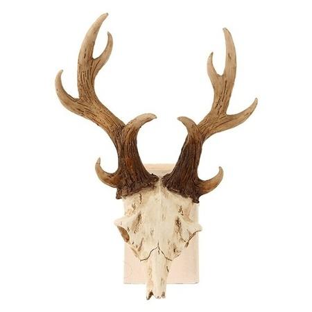 Decoratie Dierenkop Herten Schedel Met Gewei 23 Cm Bestellen Voor 13 95 Bij Het Knuffelparadijs